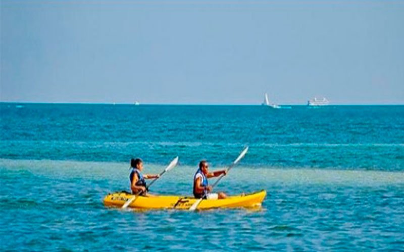 Kayaking and marine ecosystem